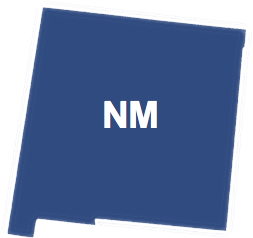 form an LLC in new mexico